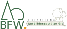 FAST Ort Logo