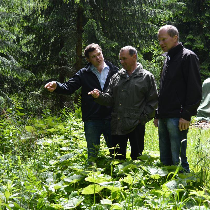Mitglieder des Waldverbands beraten sich