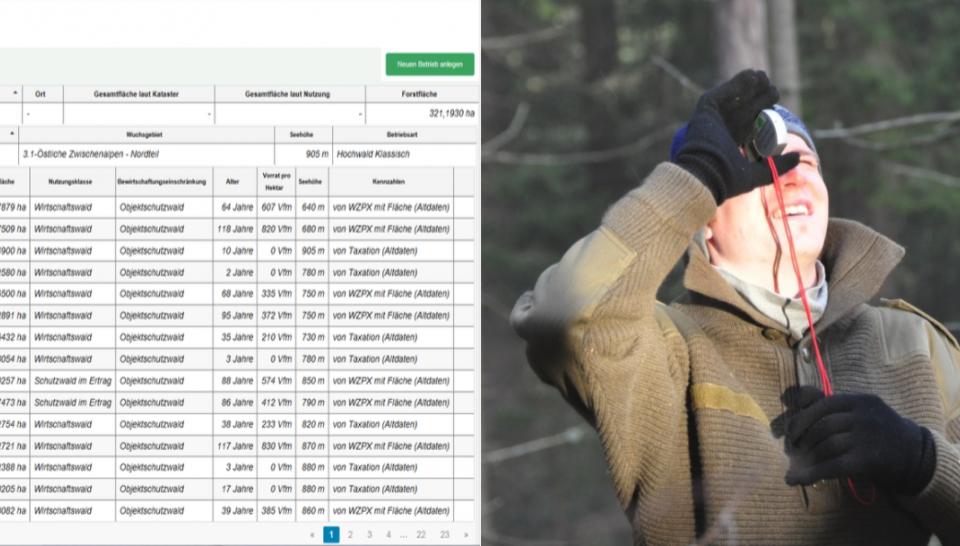 """Seminar """"Management- und Waldfachplan selbst erstellen"""""""